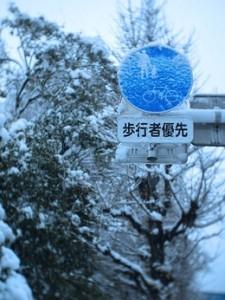 HAW75_cyakuhyoutohokousya500-thumb-260xauto-4738